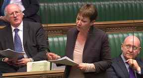 Green MP calls for urgent review of blood donations rules