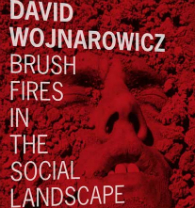 BOOK REVIEW: Brush Fires in the Social Landscape: David Wojnarowicz