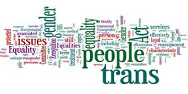 Equality groups welcome Government's trans report