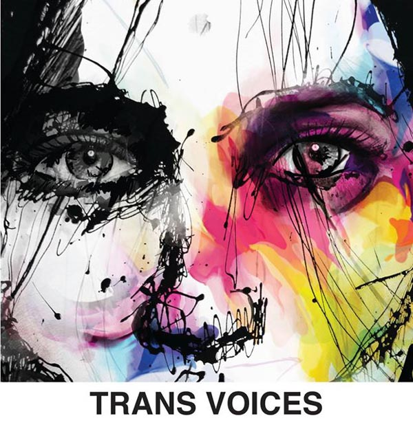 PREVIEW: Trans Voices – Becoming Who You Are by Declan Henry