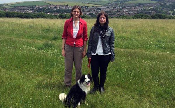 Council update dog walker scheme