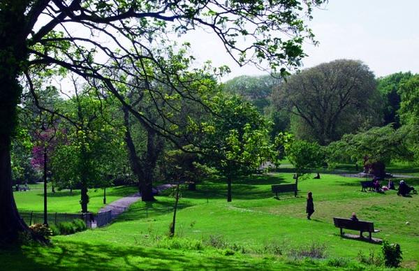 Talking parks Brighton consultation
