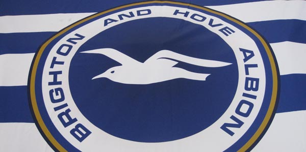 Seagull fans support Sussex Beacon on match day