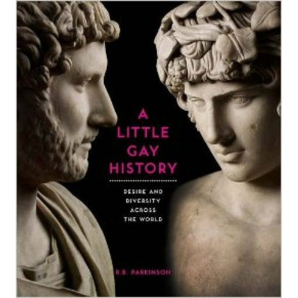 BOOK REVIEW: A Little Gay History: Desire and Diversity Across the World
