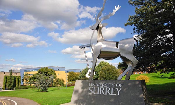 Guildford voted most gay friendly university town