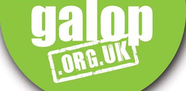 Galop launch new online LGBT+ hate crime initiative