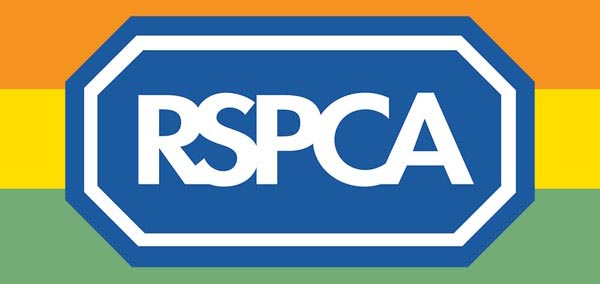 RSPCA launches LGBT t-shirts for 'biggest ever' Pride Cymru presence