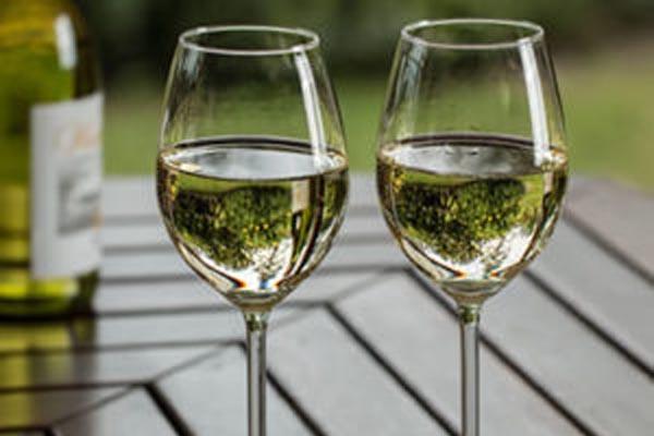 Martin Fisher Foundation wine tasting fundraiser