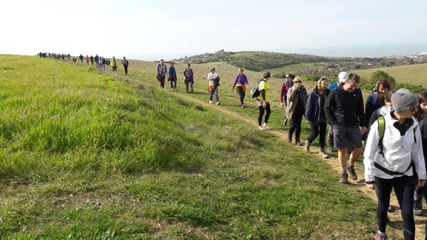 Brighton and Hove Way Association organise Stanmer Park clean up
