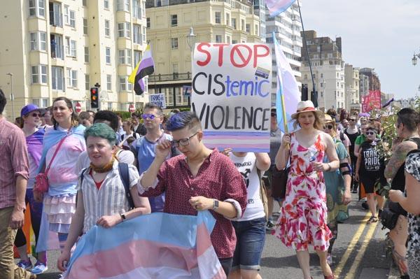 Fancy helping Trans Pride Brighton?