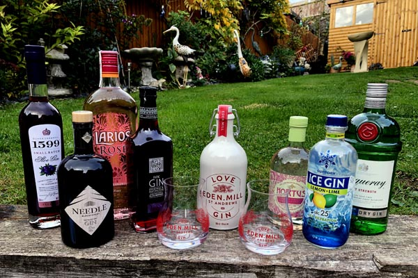 Mega 'World of Gin Hamper' to be auctioned at Hibernation