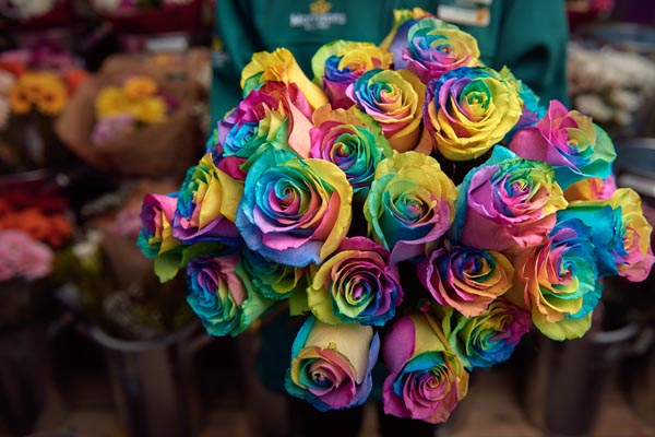 Morrisons' support LGBT+ youth homelessness this Valentines with Rainbow Rose