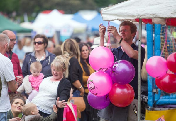 Stallholders wanted for Hove Park Carnival