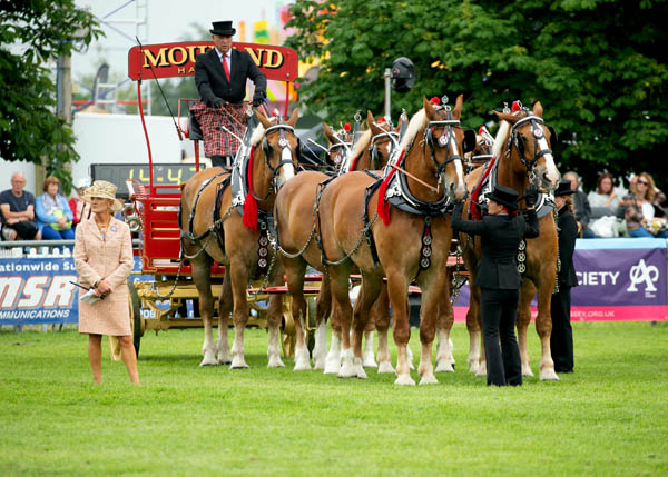 COMPETITION: Win a pair of tickets to the South of England Show