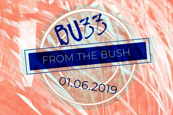 REVIEW: Buzz from the Bush in London