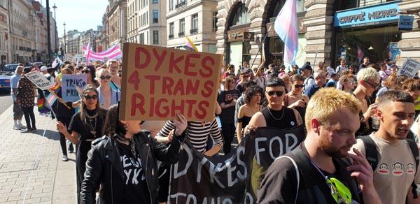 London celebrates inaugural Trans Pride