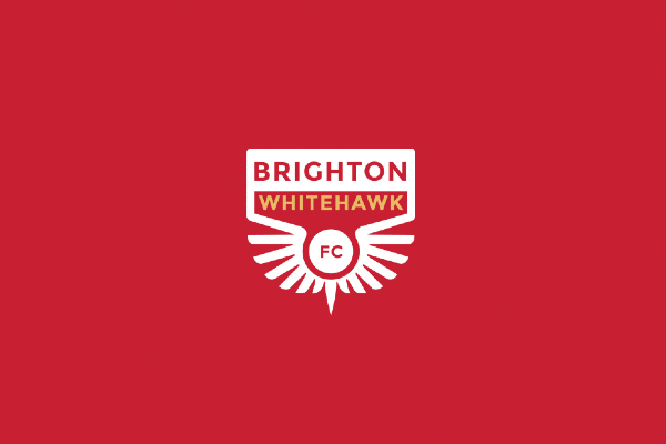 Wanna Play? The Life, Loves and Allies of Whitehawk FC with Kevin Miller