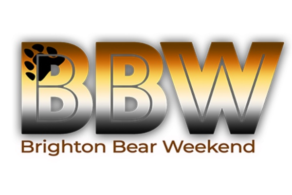 Mr Virtual Brighton Bear 2020 Competition announced