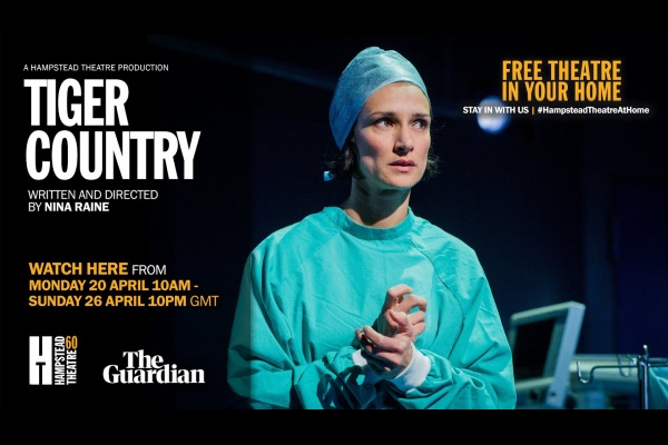 REVIEW: Hampstead Theatre streaming Tiger Country