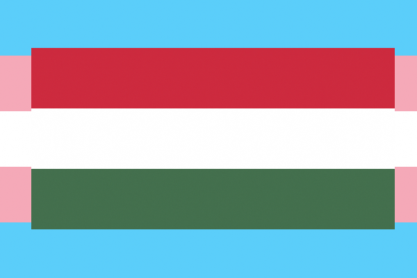 Hungarian Parliament strip trans people of right to legal gender recognition