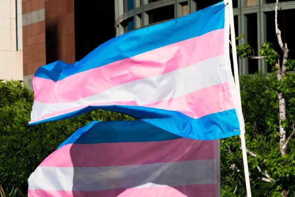 UK cuts costs of gender recognition certificates