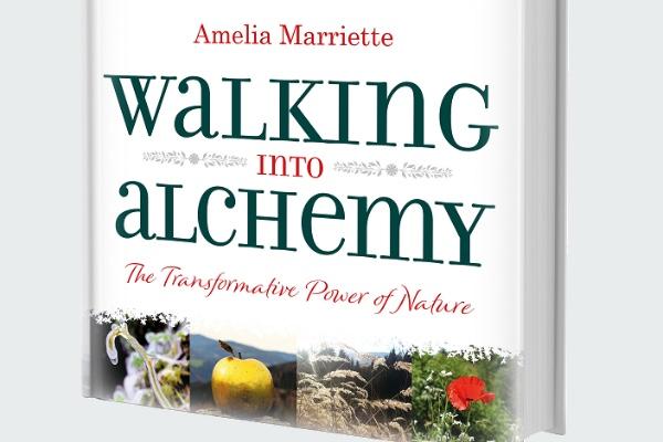 Book REVIEW: Walking into Alchemy: Amelia Marriette
