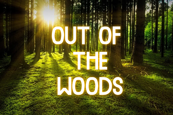 FEATURE: More openings, more shows – out of the woods ?